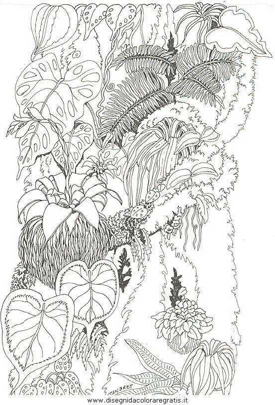 natura/fiori/fiori_fiore_096.JPG