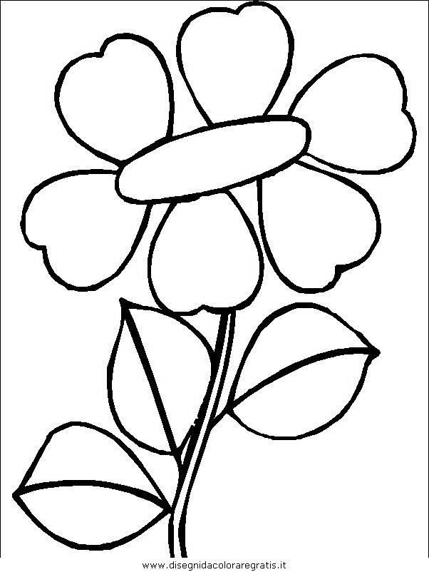 natura/fiori/fiori_fiore_099.JPG