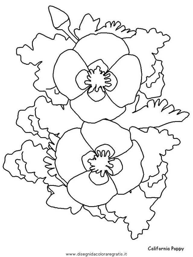 natura/fiori/fiori_fiore_126.JPG