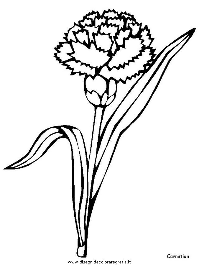 natura/fiori/fiori_fiore_128.JPG