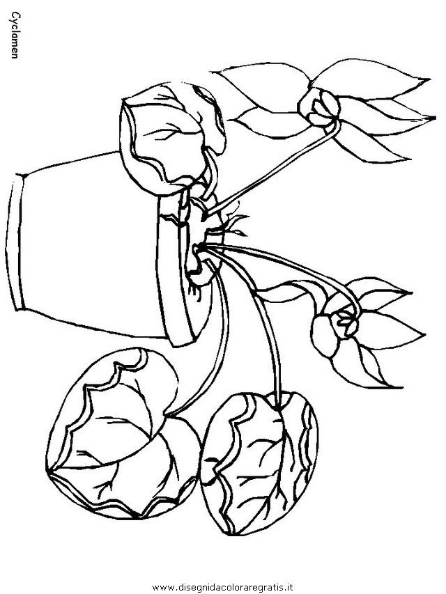 natura/fiori/fiori_fiore_131.JPG