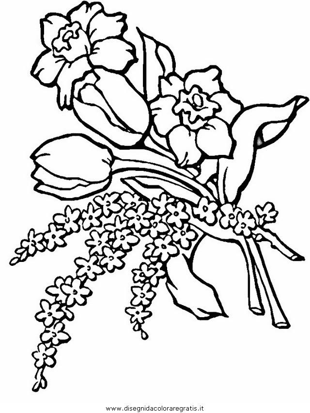natura/fiori/fiori_fiore_137.JPG