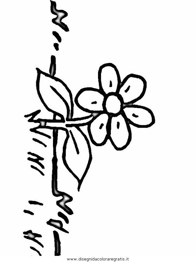 natura/fiori/fiori_fiore_142.JPG