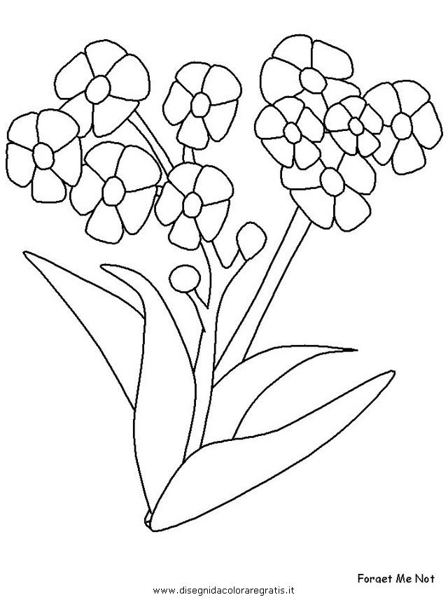 natura/fiori/fiori_fiore_150.JPG