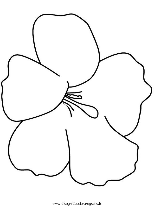 natura/fiori/fiori_fiore_154.JPG