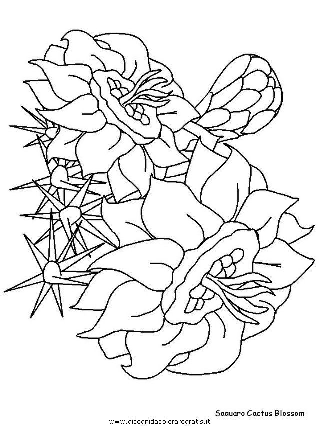 natura/fiori/fiori_fiore_169.JPG
