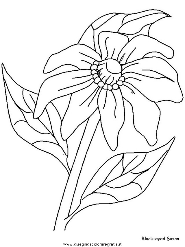 natura/fiori/fiori_fiore_171.JPG