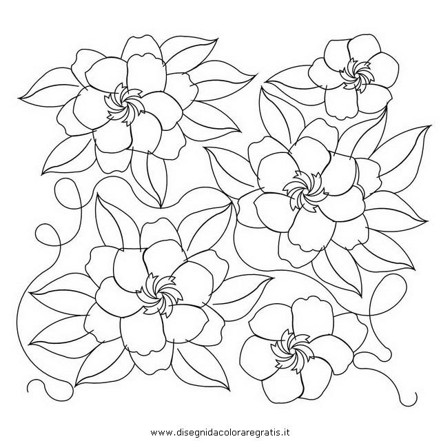natura/fiori/gardenia_gardenie-2.JPG