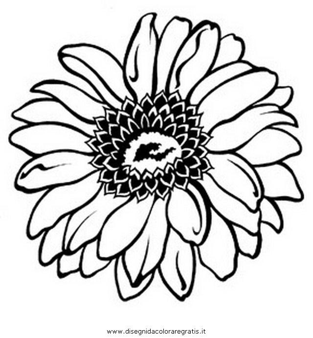 Gerbera Daisy Line Drawing Disegno gerbera_gerber...