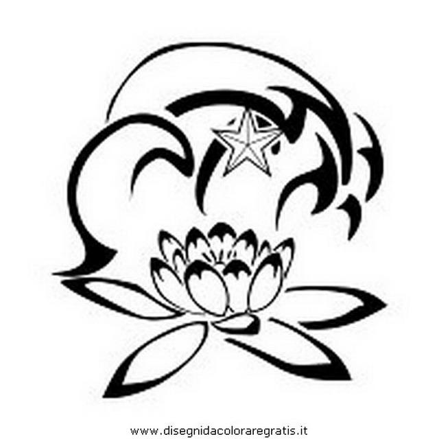 natura/fiori/loto_03.JPG