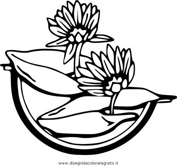 natura/fiori/ninfea_05.JPG