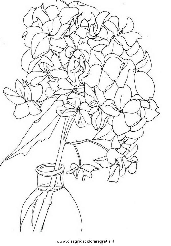 natura/fiori/ortensia_4.JPG