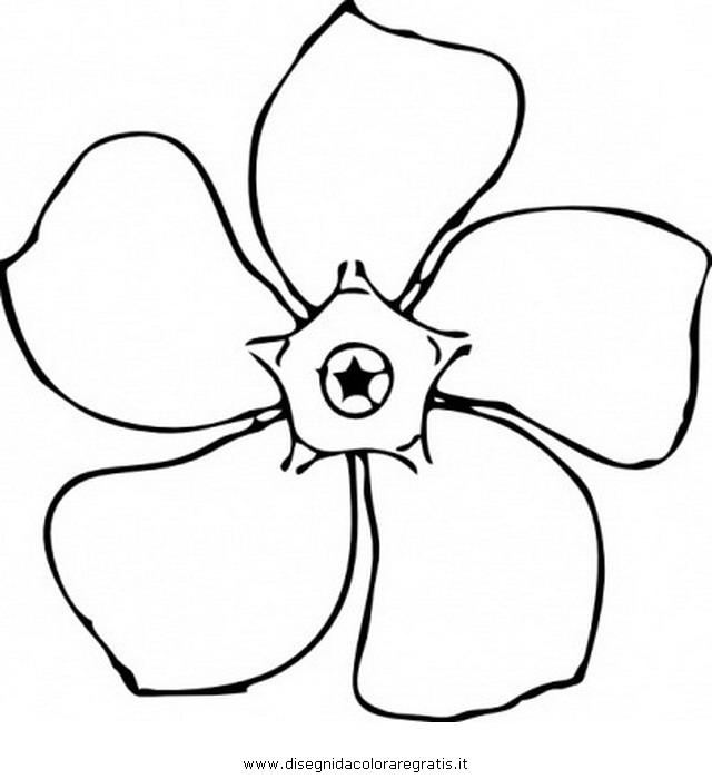 natura/fiori/pervinca.JPG