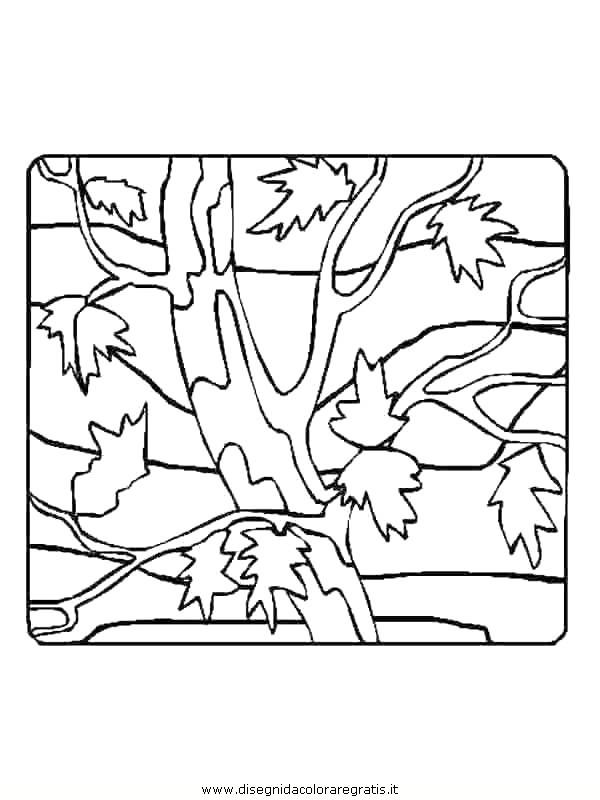 natura/foglie/foglie01.JPG