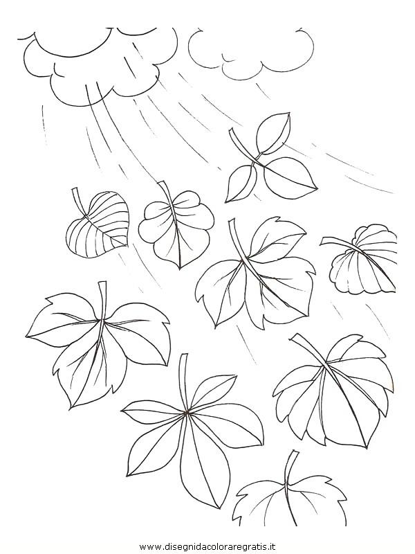 natura/foglie/foglie23.JPG