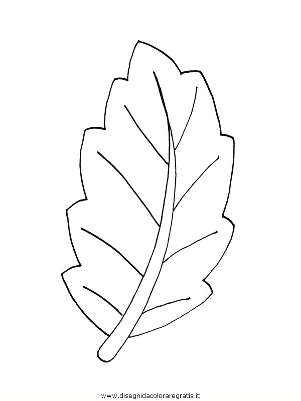 natura/foglie/foglie34.JPG