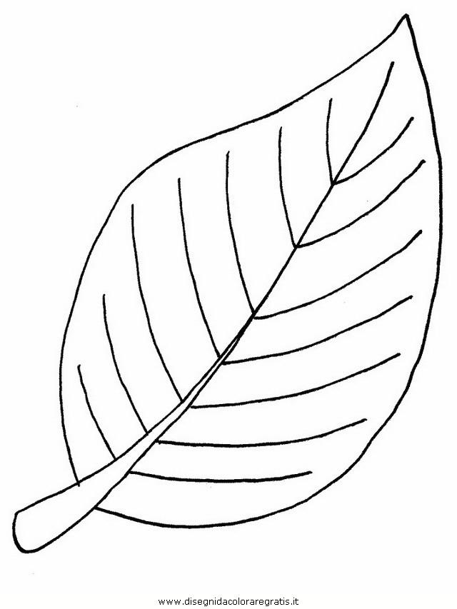 natura/foglie/foglie39.JPG