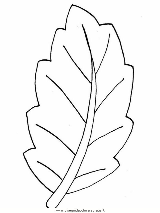natura/foglie/foglie40.JPG