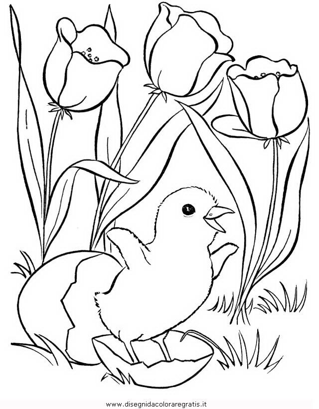 natura/primavera/primavera_62.JPG