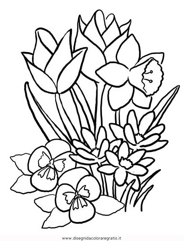 natura/primavera/primavera_67.JPG