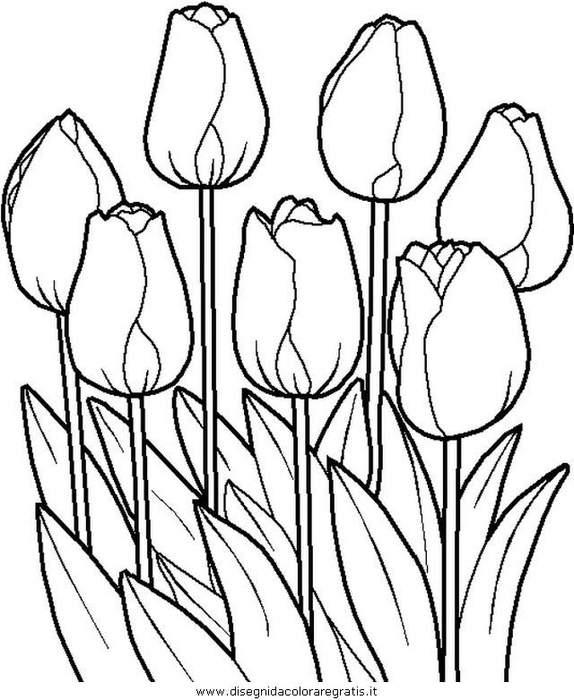 Disegno primavera fiori 21 categoria natura da colorare - Disegno finestra da colorare ...