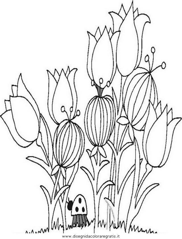 natura/primavera/primavera_fiori_22.JPG