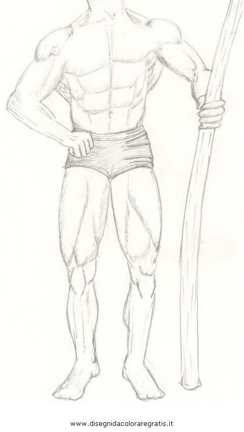 persone/corpo_umano/muscoli_24.JPG