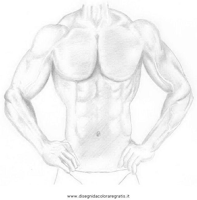 persone/corpo_umano/muscoli_26.JPG