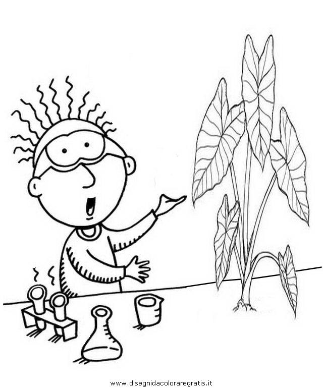 persone/mestieri/botanico_2.JPG