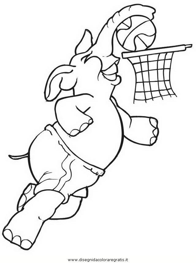 sport/basket/pallacanestro_52.JPG