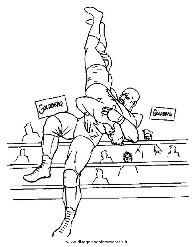 sport/sportmisti/wwe_wrestling_3.JPG
