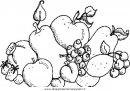 alimenti/frutta/fruit.JPG