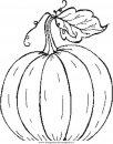 alimenti/frutta/pumpkin_anguria.JPG