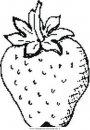 alimenti/frutta/strawberry_fragola.JPG