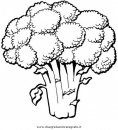 alimenti/verdura/broccolo_01.JPG