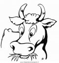 animali/animalifattoria/fattoria_cascina_16.JPG