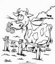animali/animalifattoria/fattoria_cascina_26.JPG