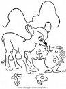 animali/animalimisti/animali_misti_008.JPG