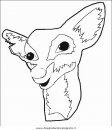 animali/animalimisti/animali_misti_073.JPG