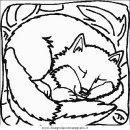 animali/animalimisti/animali_misti_083.JPG