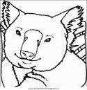 animali/animalimisti/animali_misti_087.JPG