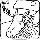 animali/animalimisti/animali_misti_090.JPG