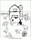 animali/animalimisti/animali_misti_205.JPG