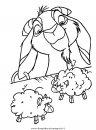 animali/animalimisti/animali_misti_228.JPG