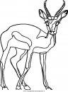 animali/animalimisti/cervo94.JPG