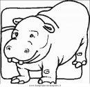 animali/animalimisti/ippopotamo33.JPG