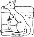 animali/canguri/canguro48.JPG