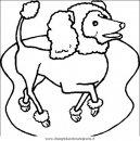 animali/cani/cane_044.JPG