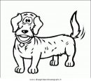 animali/cani/cane_057.JPG