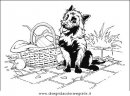 animali/cani/cane_072.JPG